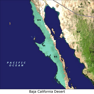 Baja California Desert map
