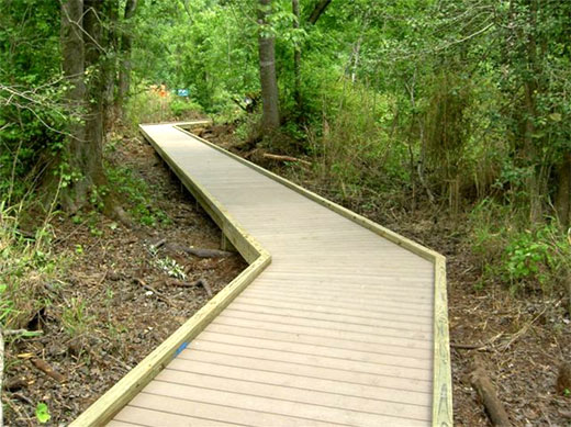 Great Dismal Swamp NWR boardwalk