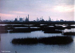 Wetland in front of factory