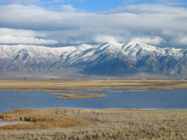 Salt Lake marsh