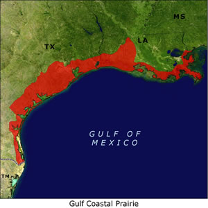 Gulf Coastal Prairie map