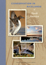Conservation in the Ricelands of North America
