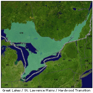 Hardwood Transition / Lower Great Lakes map