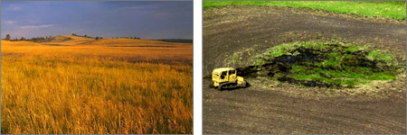 Grasslands with and without Farm Bill protections