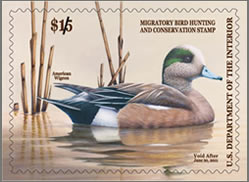 2010-2011 winning Federal Duck Stamp