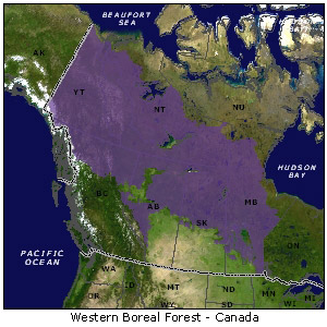 Map of Western Boreal Forest - Canada