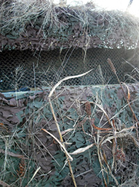 Broad Leaf Camouflage Nets