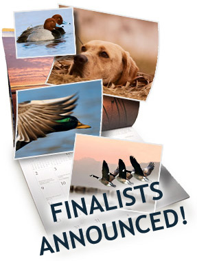 2010 DU Calendar Finalists Announced!