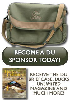 Become a DU Sponsor today!