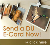 Click here to send a free, DU E-Card!