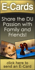 Click here to send a free DU e-card!