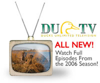 Click here to watch DU TV online!