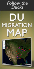 Follow the Ducks on the DU Migration Map!