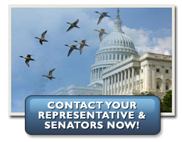 Contact Congress & ask for their support for NAWCA funding in 2010!