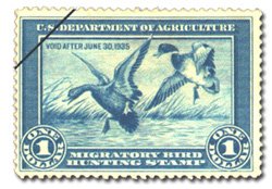 Read more from 'Great value in duck stamps' from DU Magazine