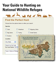 Duck Stamp and USFWS's new national wildlife refuge search site