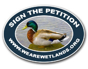 Click here to sign the We Are Wetlands petition