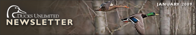 Ducks Unlimited Newsletter: January 2009 Issue