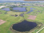 Click here to read about Jemmerson Slough WMA in Iowa