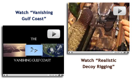 Click to watch Vanishing Gulf Coast