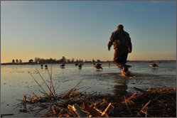 Click to read more about the link between clean water and waterfowl hunters