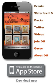 Download the official DU iPhone App now!