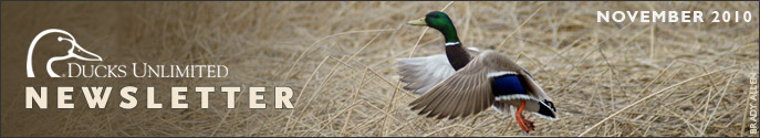 Ducks Unlimited Newsletter: November 2010 Issue