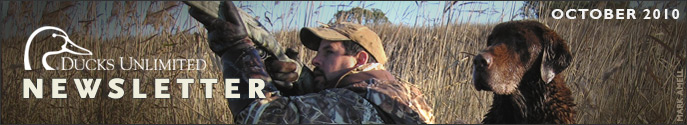 Ducks Unlimited Newsletter: October 2010 Issue