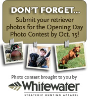 Submit your retriever photos for the Opening Day Photo Contest!