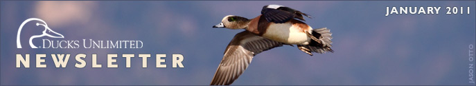 Ducks Unlimited Newsletter: January 2011 Issue