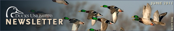 Ducks Unlimited Newsletter: June 2011 Issue