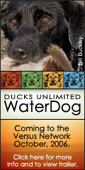 More on Ducks Unlimited WaterDog!