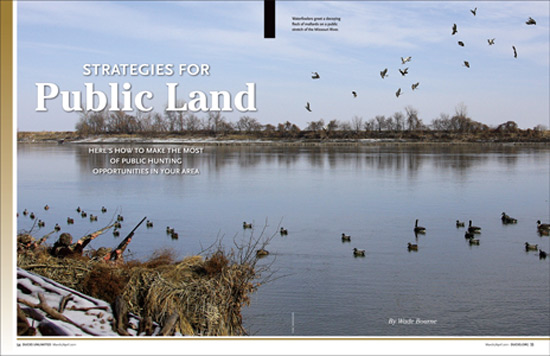Strategies for Public Land